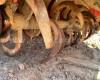 Talajmaró 140cm-es, Yanmar R214M - 5195B, használt (5)